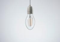 Żarówka Dekoracyjna Oval LED